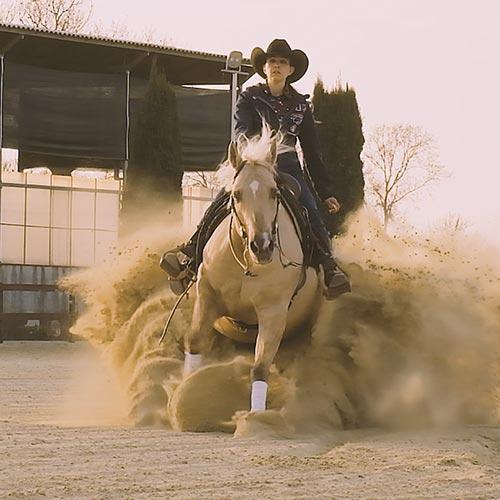 Reining. Amore e sport, per i cavalli